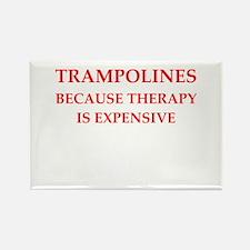 trampoline Rectangle Magnet
