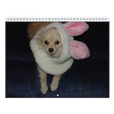 Pomeranian 2005 Wall Calendar