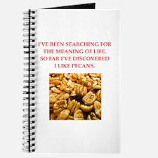 pecans Journal