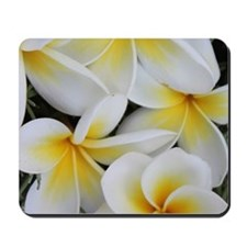 Yellow and White Magnolia Flower Blossom Mousepad