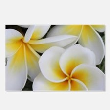 Yellow and White Magnolia Postcards (Package of 8)