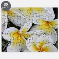 Yellow and White Magnolia Flower Blossoms Puzzle