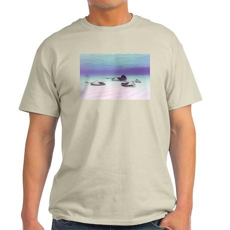Stingrays at Grand Cayman Ash Grey T-Shirt