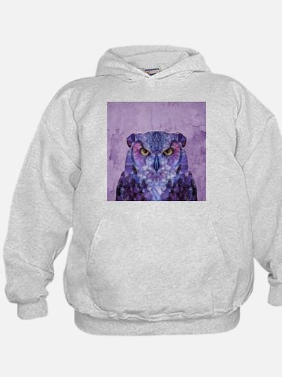 Funny Owl Hoody