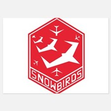 snow_bird_aerobatic Invitations