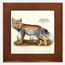 Tibetan Sand Fox Framed Tile