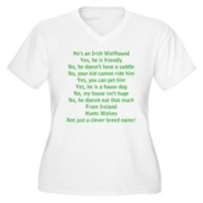 Questions Answered (he) V-Neck Plus Size T-Shirt