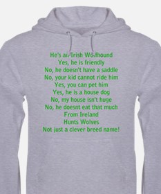 Wolfie Questions Answered (he) Hoodie