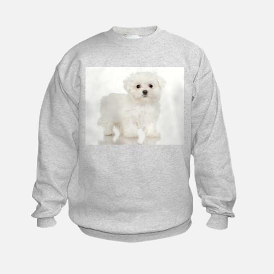 jigsaw005 Sweatshirt