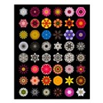The Flower Mandalas Project 16x20 Poster, no text