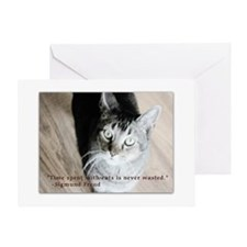 Time Spent With Cats Greeting Cards