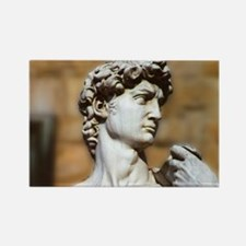 Famous David Statue in Florence Italy Magnets
