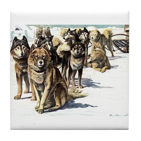Tile Coaster - Husky Eskimo Dog-2