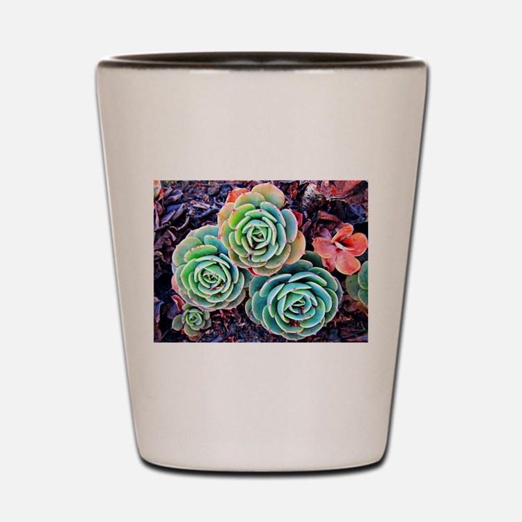 Succulents in the City Shot Glass
