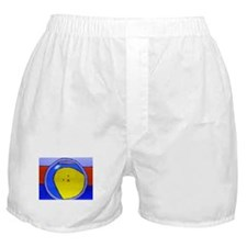 Karl Flies Southwest Boxer Shorts