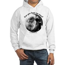 Can you hear me now? Hoodie