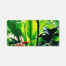 Tropical 2 Aluminum License Plate