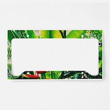 Tropical 2 License Plate Holder