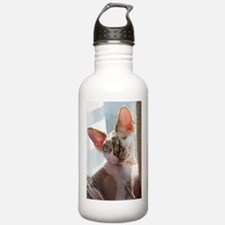 Little George Hairlesson Water Bottle