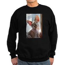 Little George Hairlesson Sweatshirt
