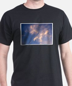 Eagle Diving for Fish T-Shirt