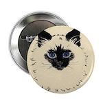 Blue Eyed Kitten Button
