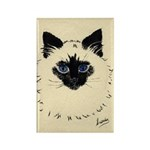 Blue Eyed Kitten Rectangle Magnet (10 pack)