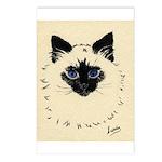 Blue Eyed Kitten Postcards (Package of 8)