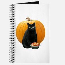 Black Cat Pumpkin Journal