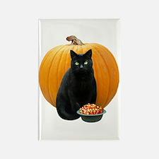 Black Cat Pumpkin Rectangle Magnet