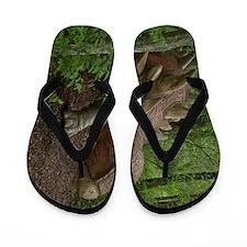 Dinosaur 3785 Flip Flops