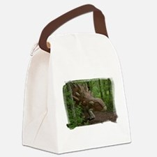 Dinosaur 3785 Canvas Lunch Bag