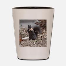 Squirrel Humor Shot Glass