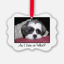 Cute Shih Tzu Dog Ornament