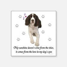 English Springer Spaniel Sticker