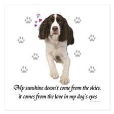English Springer Spaniel Invitations