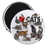 "Magnet ""I Love Cats"""
