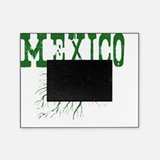 Mexico Roots Picture Frame