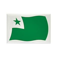 Esperanto Flag 2 Rectangle Magnet (100 pack)