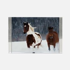 Horses in Snow Magnets