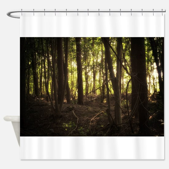 Sunlit Forest Shower Curtain