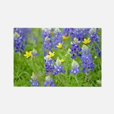 Cool Blue lupine Rectangle Magnet