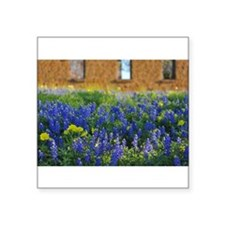 Blue and Yellow Wildflowers Sticker