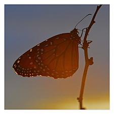 Autumn Butterfly Invitations