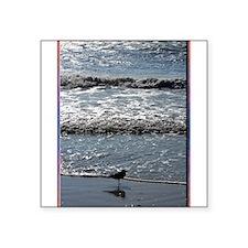 Seagull, waves, photo Sticker