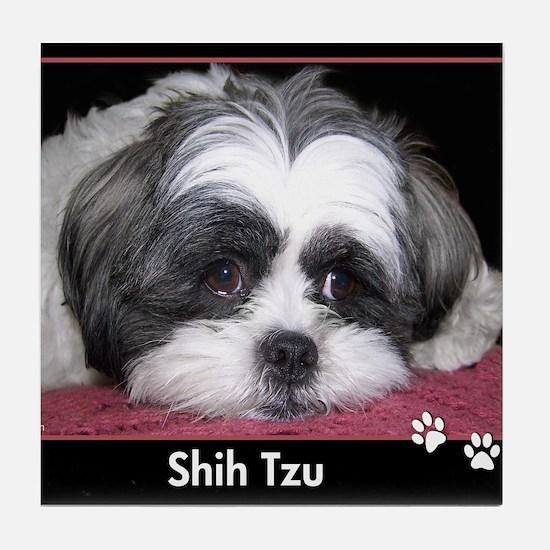 Shih Tzu Dog Photo Tile Coaster