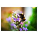 Humble Bumblebee Wall Art