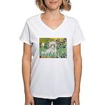Irises / Coton Women's V-Neck T-Shirt