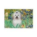 Irises / Coton Rectangle Magnet (10 pack)
