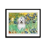 Irises / Coton Framed Panel Print
